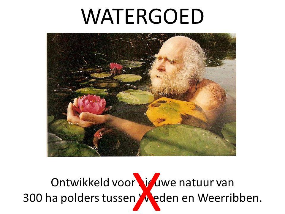 WATERGOED Ontwikkeld voor nieuwe natuur van 300 ha polders tussen Wieden en Weerribben. X