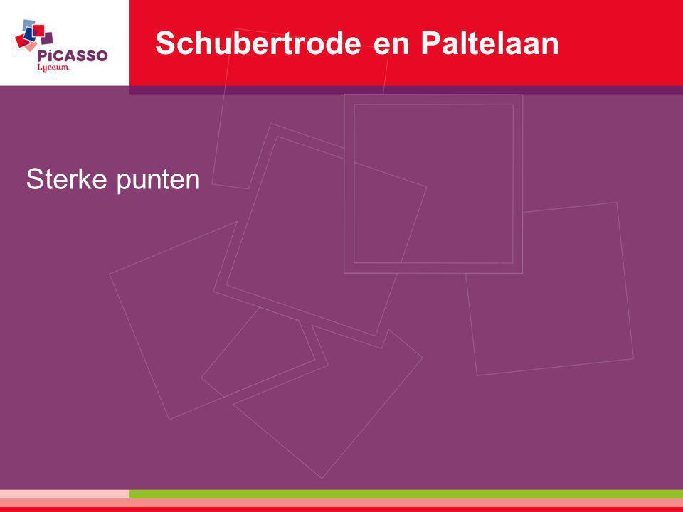 Schubertrode en Paltelaan Sterke punten
