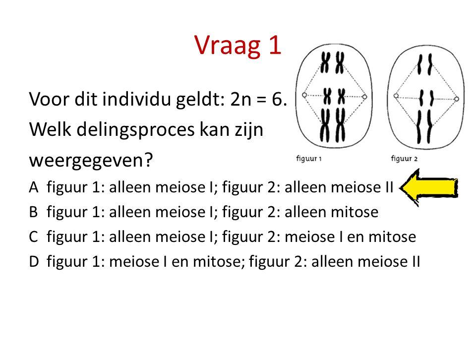 Vraag 1 Voor dit individu geldt: 2n = 6. Welk delingsproces kan zijn weergegeven? Afiguur 1: alleen meiose I; figuur 2: alleen meiose II Bfiguur 1: al