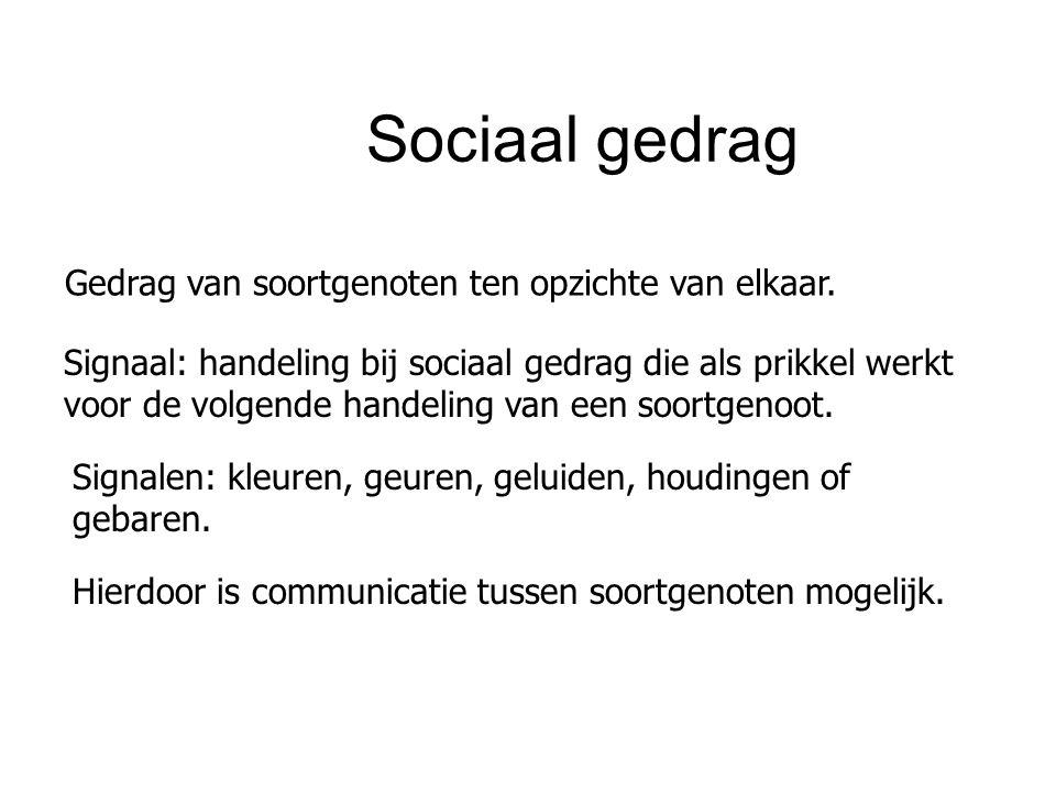 Sociaal gedrag Gedrag van soortgenoten ten opzichte van elkaar. Signaal: handeling bij sociaal gedrag die als prikkel werkt voor de volgende handeling