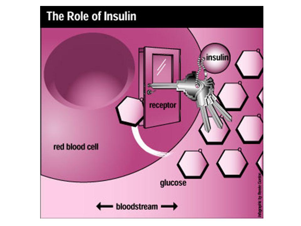 Type 1 Diabetes = jeugddiabetes (autoimmuunziekte) 0,5%