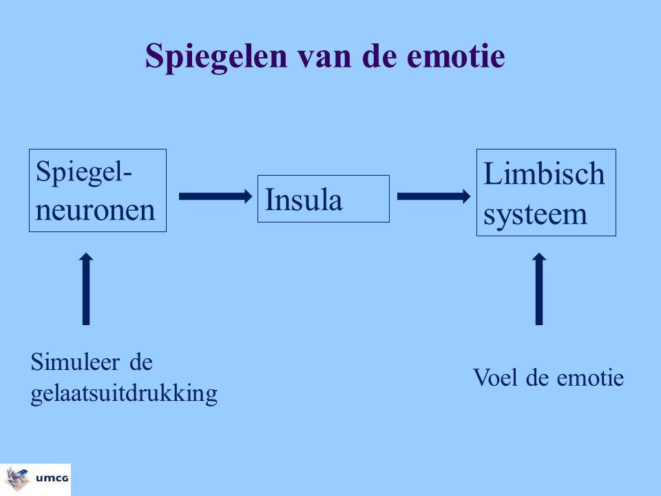 Insula Spiegel- neuronen Limbisch systeem Simuleer de gelaatsuitdrukking Voel de emotie Spiegelen van de emotie