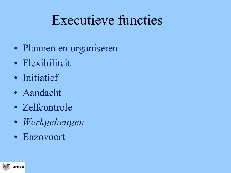Executieve functies Plannen en organiseren Flexibiliteit Initiatief Aandacht Zelfcontrole Werkgeheugen Enzovoort
