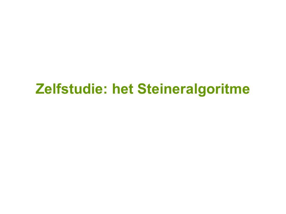 Zelfstudie: het Steineralgoritme