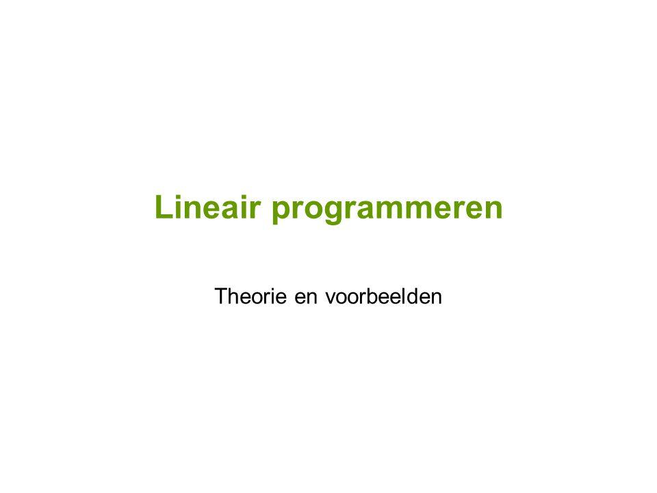 Lineair programmeren Theorie en voorbeelden
