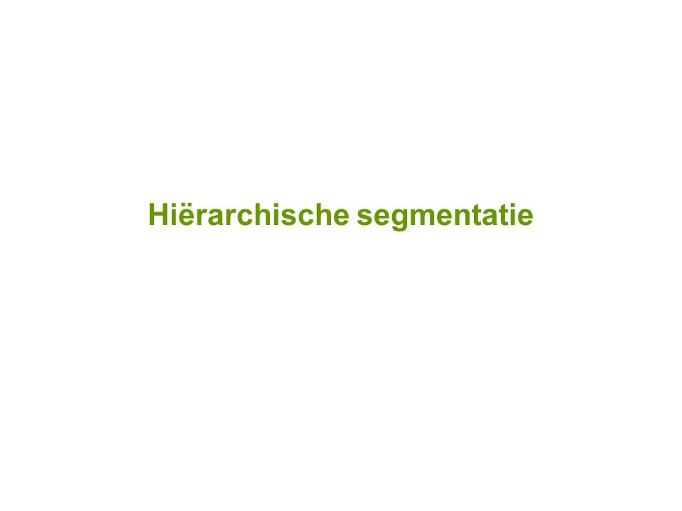 Hiërarchische segmentatie
