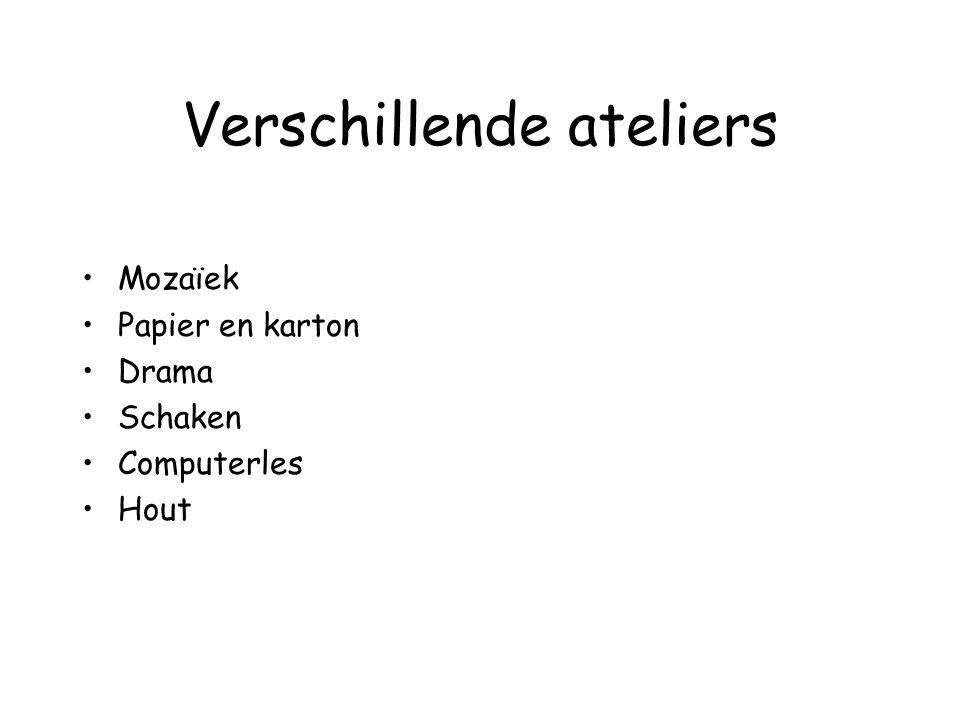 Verschillende ateliers Mozaïek Papier en karton Drama Schaken Computerles Hout