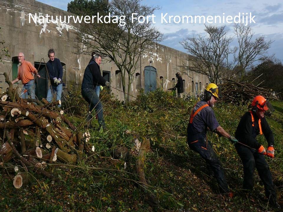 Natuurwerkdag Fort Krommeniedijk