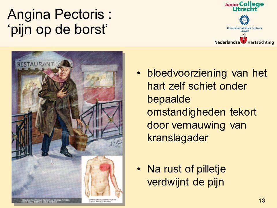 Angina Pectoris : 'pijn op de borst' bloedvoorziening van het hart zelf schiet onder bepaalde omstandigheden tekort door vernauwing van kranslagader Na rust of pilletje verdwijnt de pijn 13