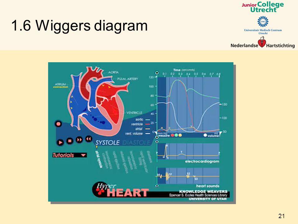 1.6 Wiggers diagram 21