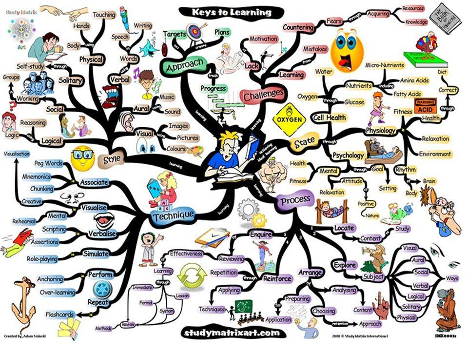 Werkgeheugen en Lange termijn geheugen Werkgeheugen (=korte termijn geheugen) is trainbaar (super werkgeheugen) Lange termijn geheugen (thalamus en hippocampus helpen/selecteren info voor cortex en rekruteren zenuwen en hersengebieden) Mind-map, loci-methode helpt overgang van korte termijn geheugen naar lange termijn geheugen
