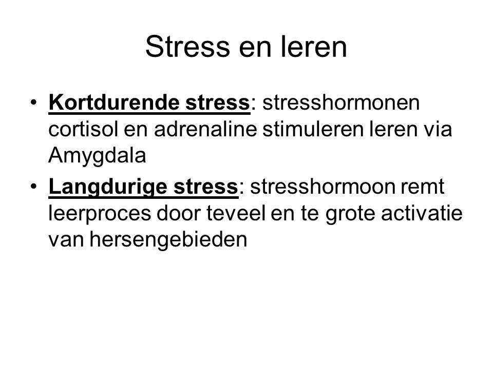 Stress en leren Kortdurende stress: stresshormonen cortisol en adrenaline stimuleren leren via Amygdala Langdurige stress: stresshormoon remt leerproces door teveel en te grote activatie van hersengebieden