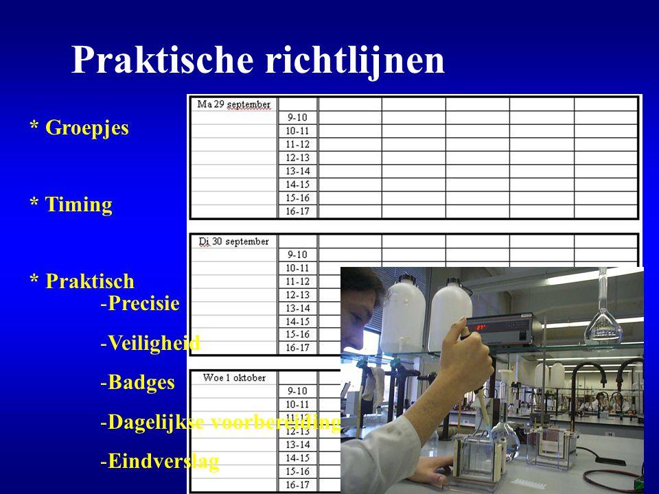 Praktische richtlijnen * Groepjes * Timing * Praktisch -Precisie -Veiligheid -Badges -Dagelijkse voorbereiding -Eindverslag