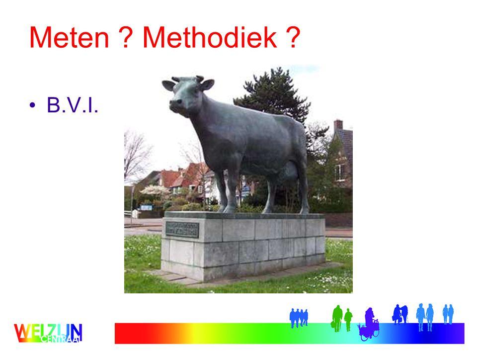 Meten ? Methodiek ? B.V.I.