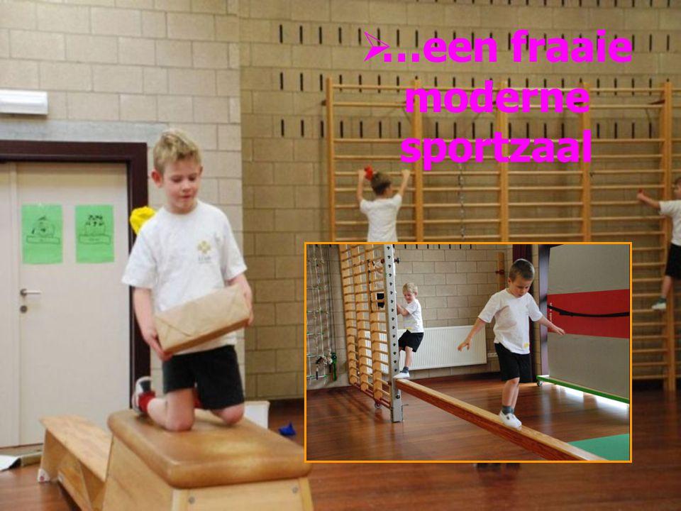 In deze school geeft schoolsport echt kleur door iedereen warm te maken en te betrekken bij het project dansmiddagen !