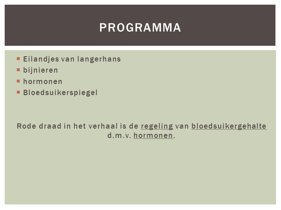  Eilandjes van langerhans  bijnieren  hormonen  Bloedsuikerspiegel Rode draad in het verhaal is de regeling van bloedsuikergehalte d.m.v.