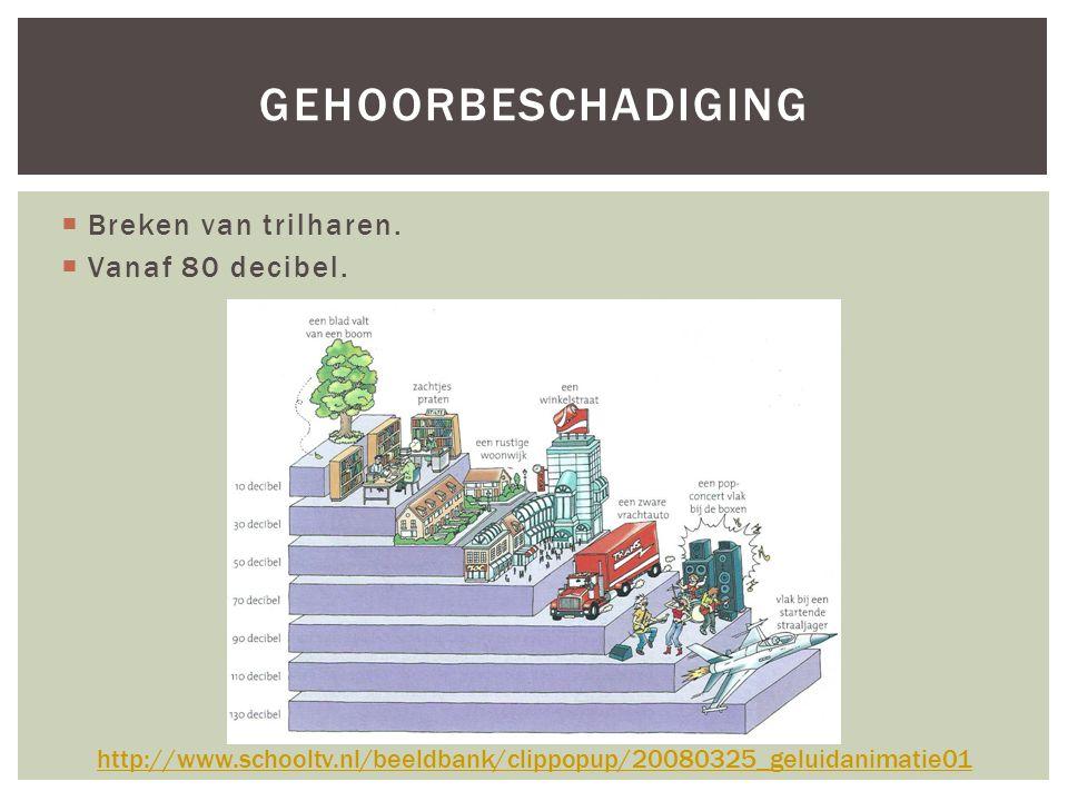  Breken van trilharen.  Vanaf 80 decibel. GEHOORBESCHADIGING http://www.schooltv.nl/beeldbank/clippopup/20080325_geluidanimatie01