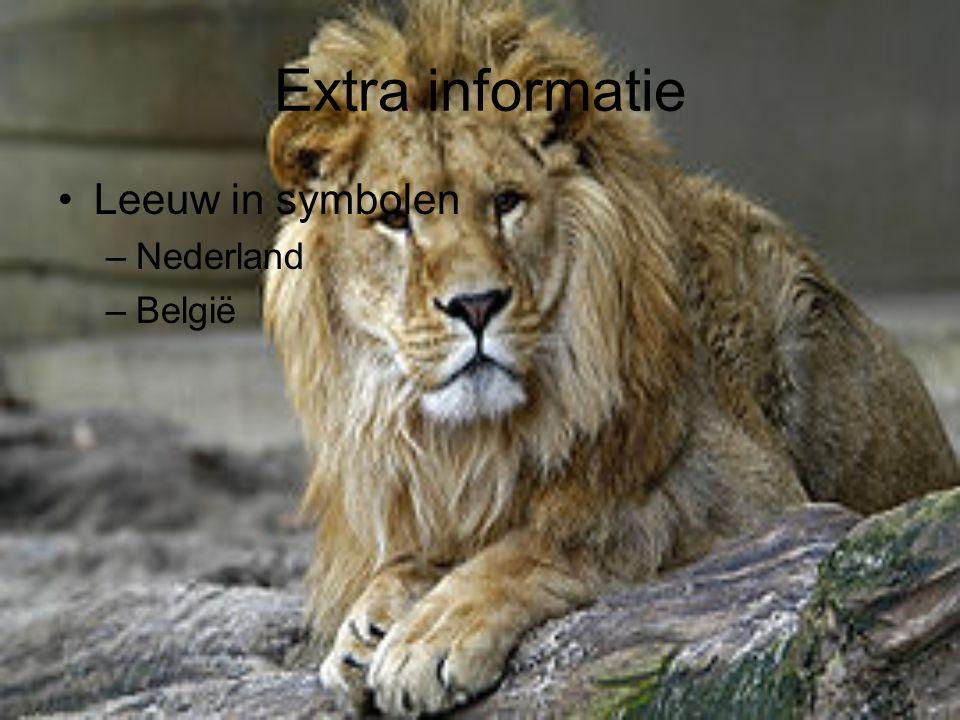 Extra informatie Leeuw in symbolen –Nederland –België