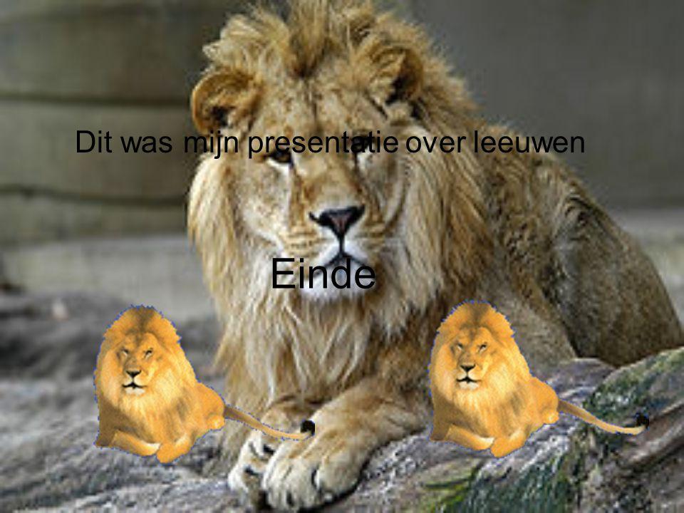 Einde Dit was mijn presentatie over leeuwen