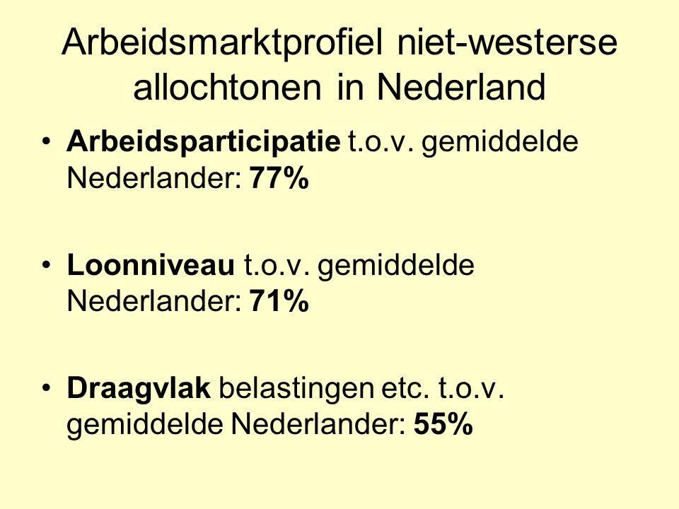 Arbeidsmarktprofiel niet-westerse allochtonen in Nederland Arbeidsparticipatie t.o.v. gemiddelde Nederlander: 77% Loonniveau t.o.v. gemiddelde Nederla