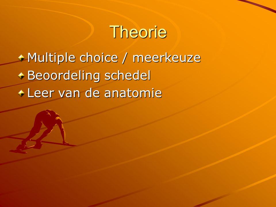 Theorie Multiple choice / meerkeuze Beoordeling schedel Leer van de anatomie