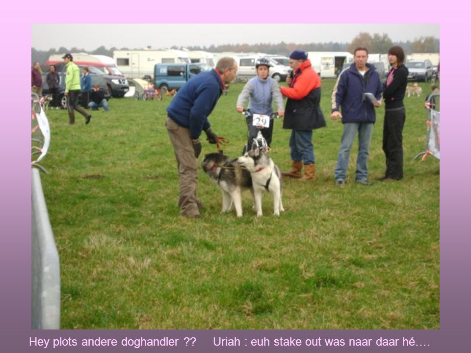 Hey plots andere doghandler ?? Uriah : euh stake out was naar daar hé….