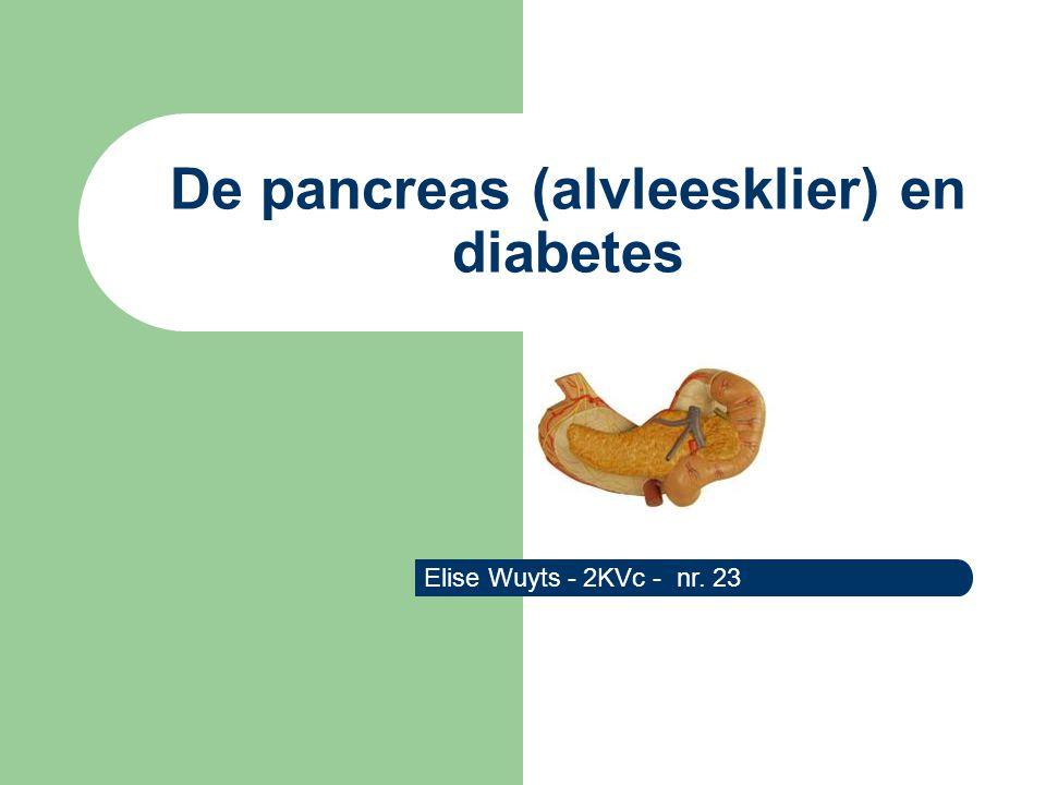 De pancreas (alvleesklier) en diabetes Elise Wuyts - 2KVc - nr. 23
