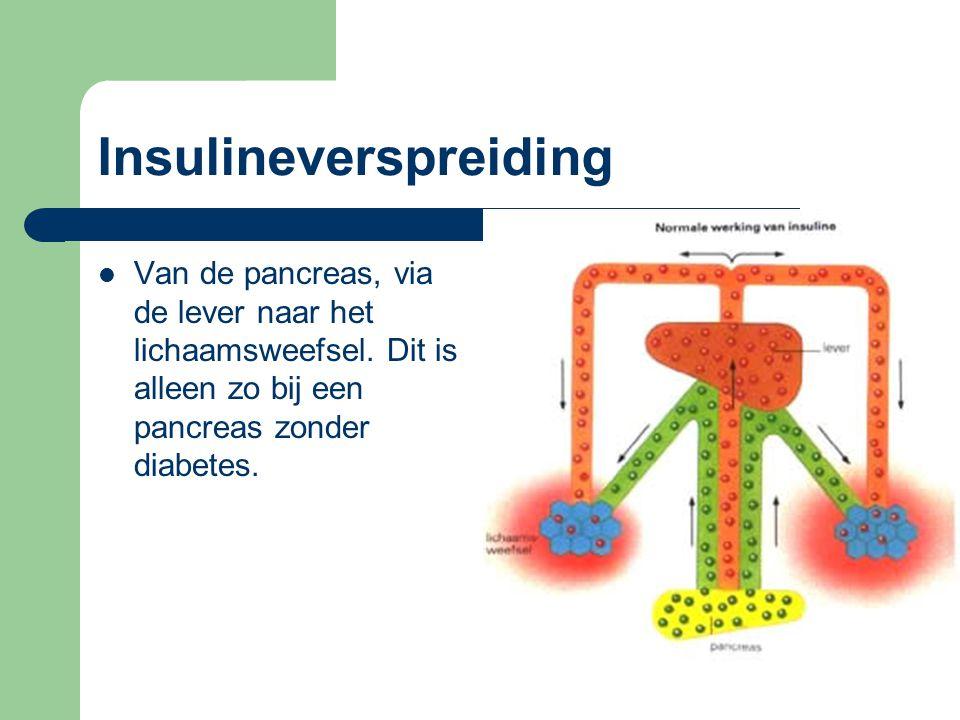Insulineverspreiding Van de pancreas, via de lever naar het lichaamsweefsel. Dit is alleen zo bij een pancreas zonder diabetes.