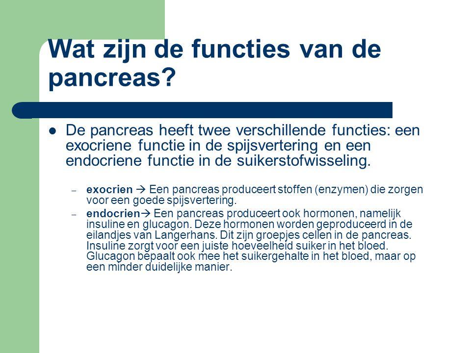 Wat zijn de functies van de pancreas? De pancreas heeft twee verschillende functies: een exocriene functie in de spijsvertering en een endocriene func