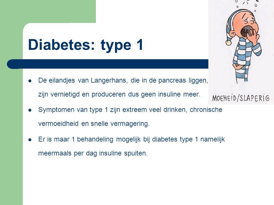 Diabetes: type 1 De eilandjes van Langerhans, die in de pancreas liggen, zijn vernietigd en produceren dus geen insuline meer. Symptomen van type 1 zi