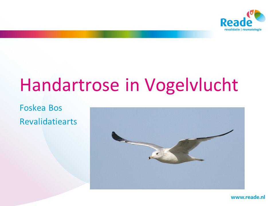 Handartrose in Vogelvlucht Foskea Bos Revalidatiearts