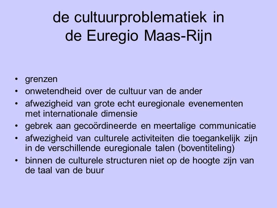 de cultuurproblematiek in de Euregio Maas-Rijn grenzen onwetendheid over de cultuur van de ander afwezigheid van grote echt euregionale evenementen met internationale dimensie gebrek aan gecoördineerde en meertalige communicatie afwezigheid van culturele activiteiten die toegankelijk zijn in de verschillende euregionale talen (boventiteling) binnen de culturele structuren niet op de hoogte zijn van de taal van de buur
