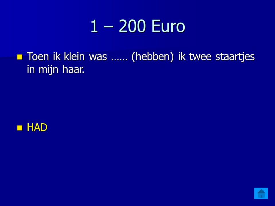 1 – 200 Euro Toen ik klein was …… (hebben) ik twee staartjes in mijn haar.