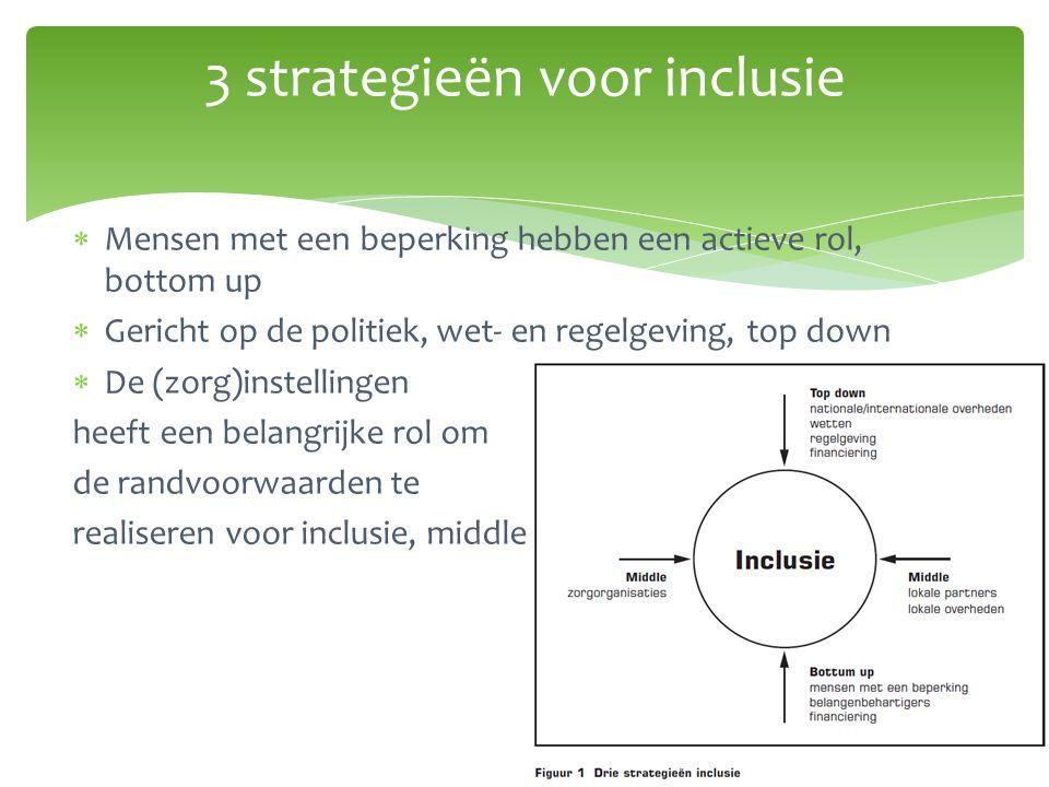3 strategieën voor inclusie  Mensen met een beperking hebben een actieve rol, bottom up  Gericht op de politiek, wet- en regelgeving, top down  De