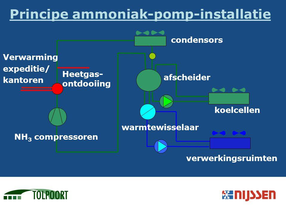 NH 3 compressoren condensors afscheider Verwarming expeditie/ kantoren Principe ammoniak-pomp-installatie koelcellen verwerkingsruimten warmtewisselaa