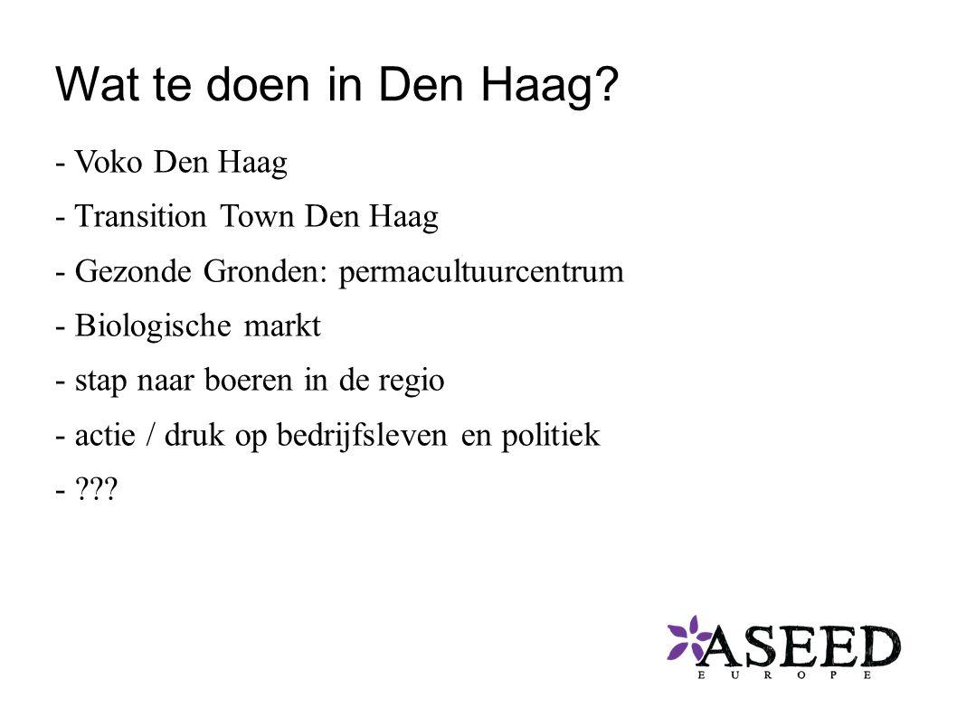 Wat te doen in Den Haag.