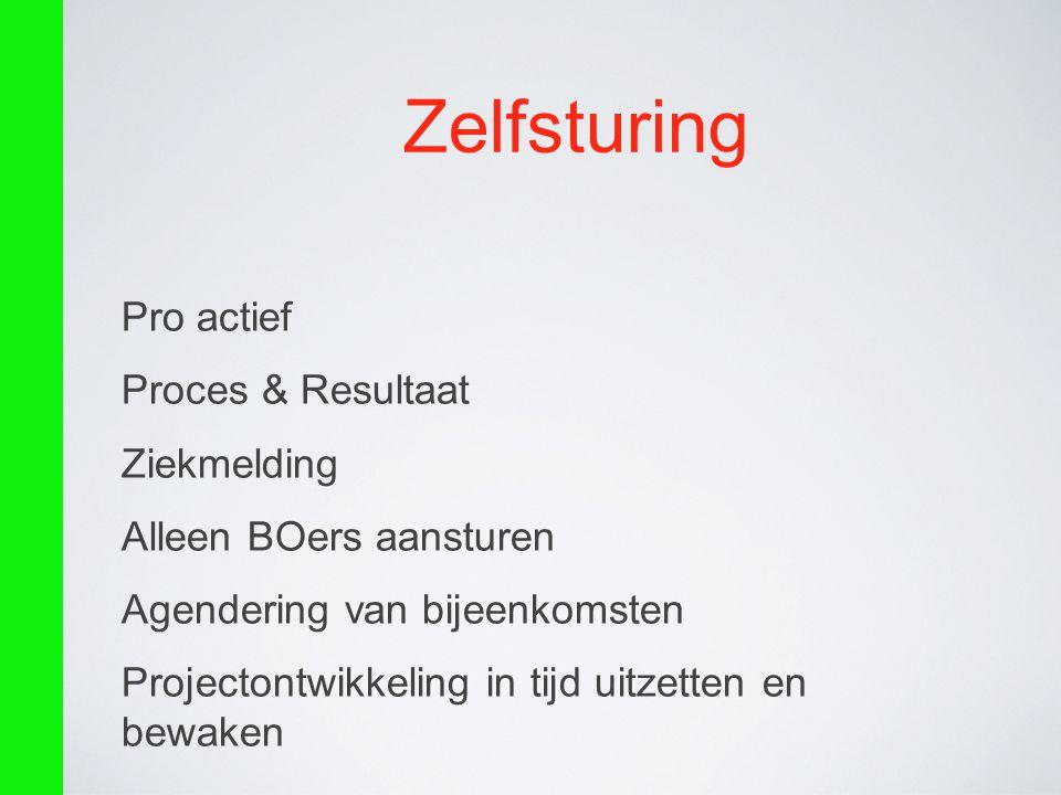 Zelfsturing Pro actief Proces & Resultaat Ziekmelding Alleen BOers aansturen Agendering van bijeenkomsten Projectontwikkeling in tijd uitzetten en bew