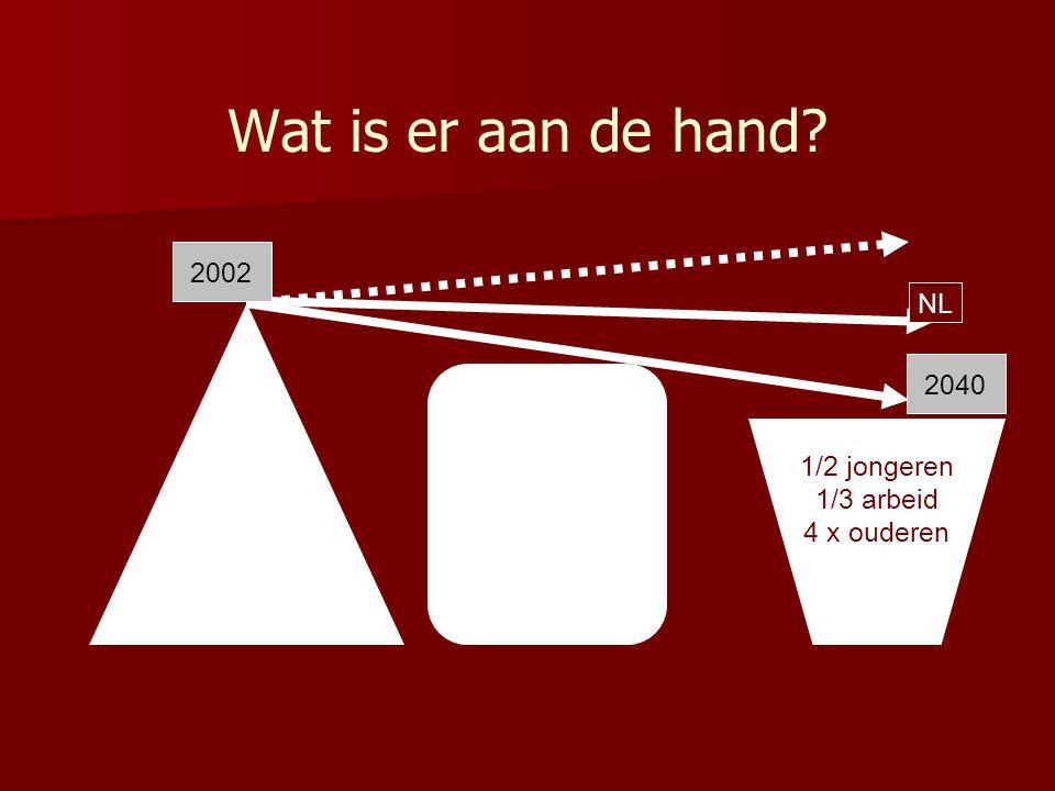 Wat is er aan de hand? 1/2 jongeren 1/3 arbeid 4 x ouderen 2002 2040 NL