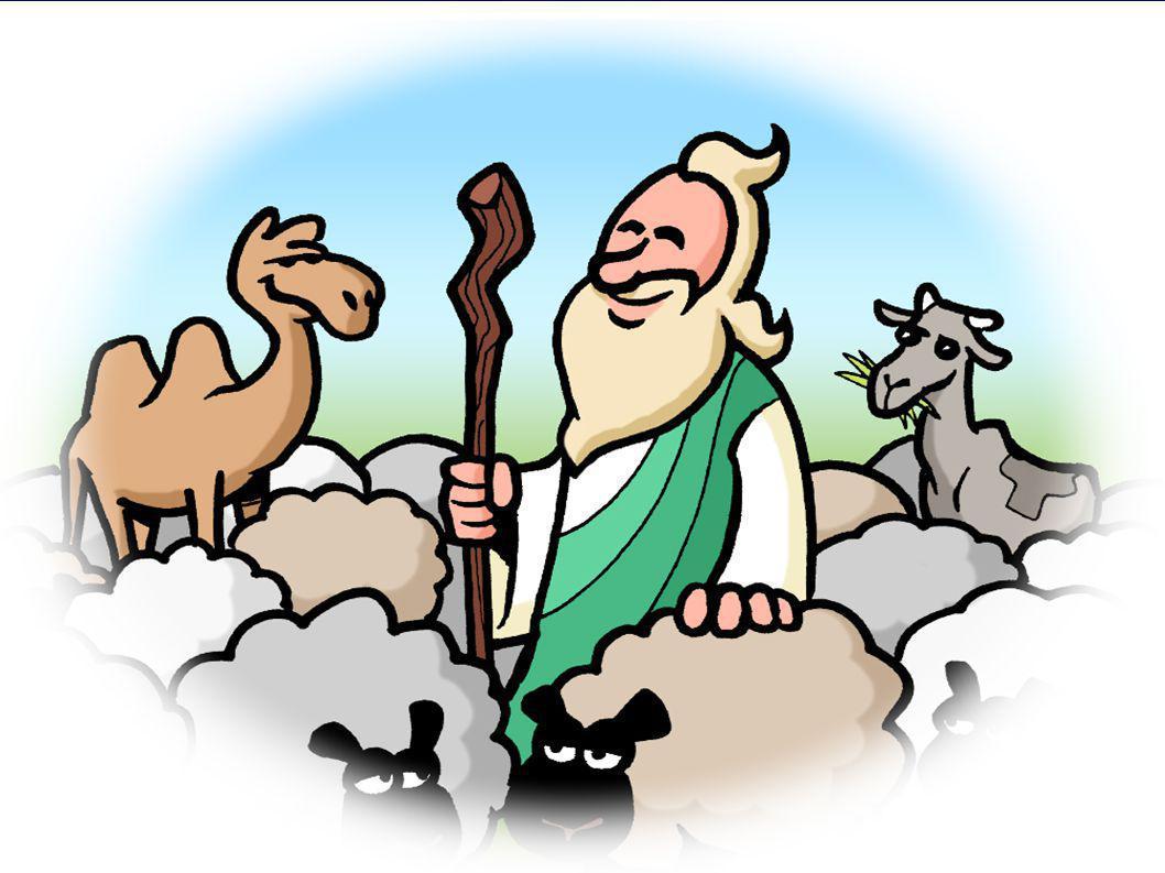 Romeinen 8 18 Ik ben ervan overtuigd dat het lijden van deze tijd in geen verhouding staat tot de luister die ons in de toekomst zal worden geopenbaard.
