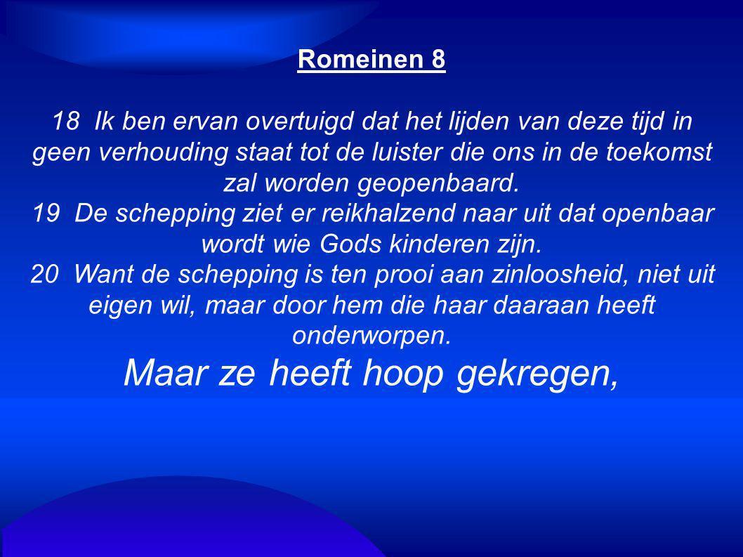 Romeinen 8 18 Ik ben ervan overtuigd dat het lijden van deze tijd in geen verhouding staat tot de luister die ons in de toekomst zal worden geopenbaar
