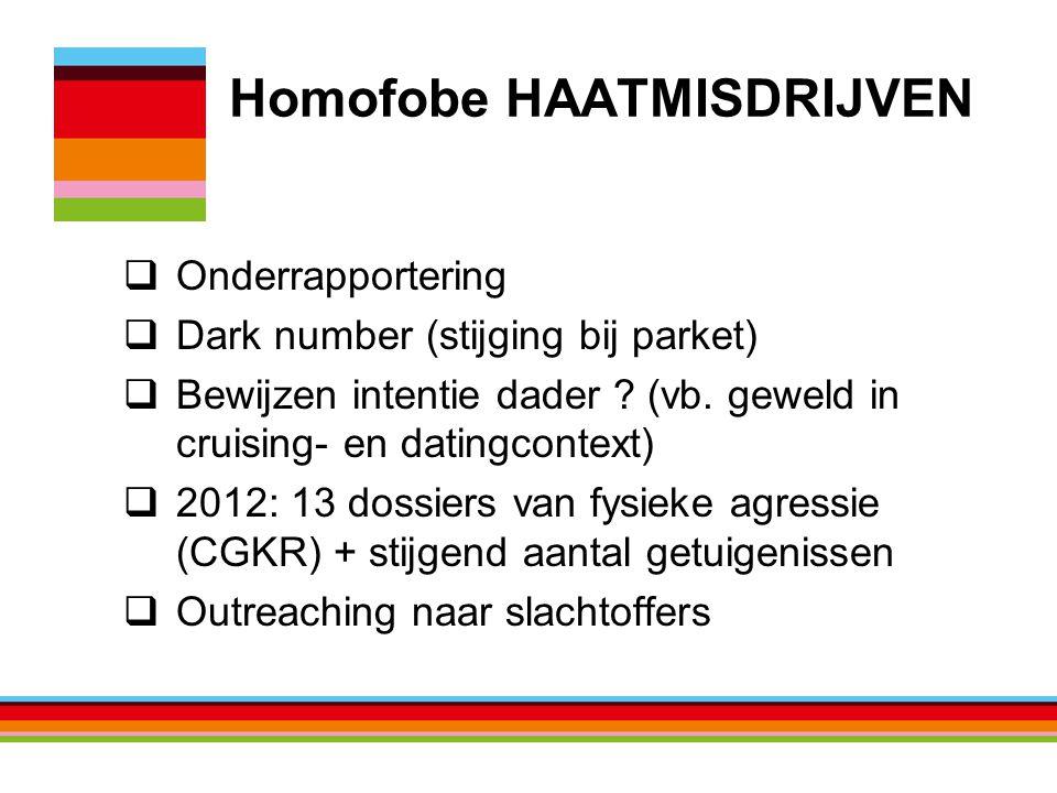 Homofobe HAATMISDRIJVEN  Onderrapportering  Dark number (stijging bij parket)  Bewijzen intentie dader .