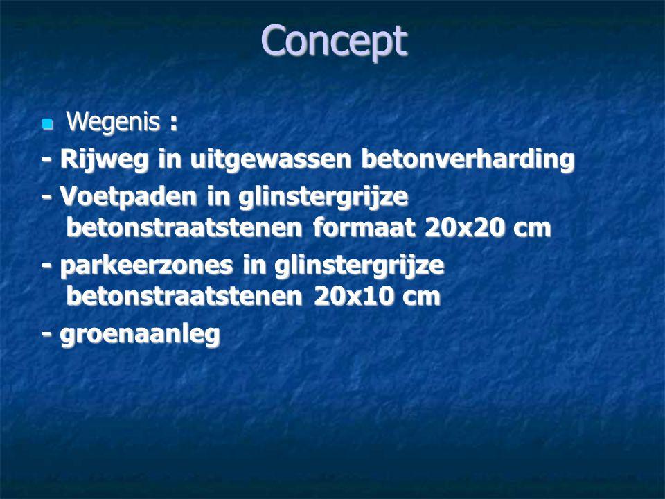 Concept Wegenis : Wegenis : - Rijweg in uitgewassen betonverharding - Voetpaden in glinstergrijze betonstraatstenen formaat 20x20 cm - parkeerzones in