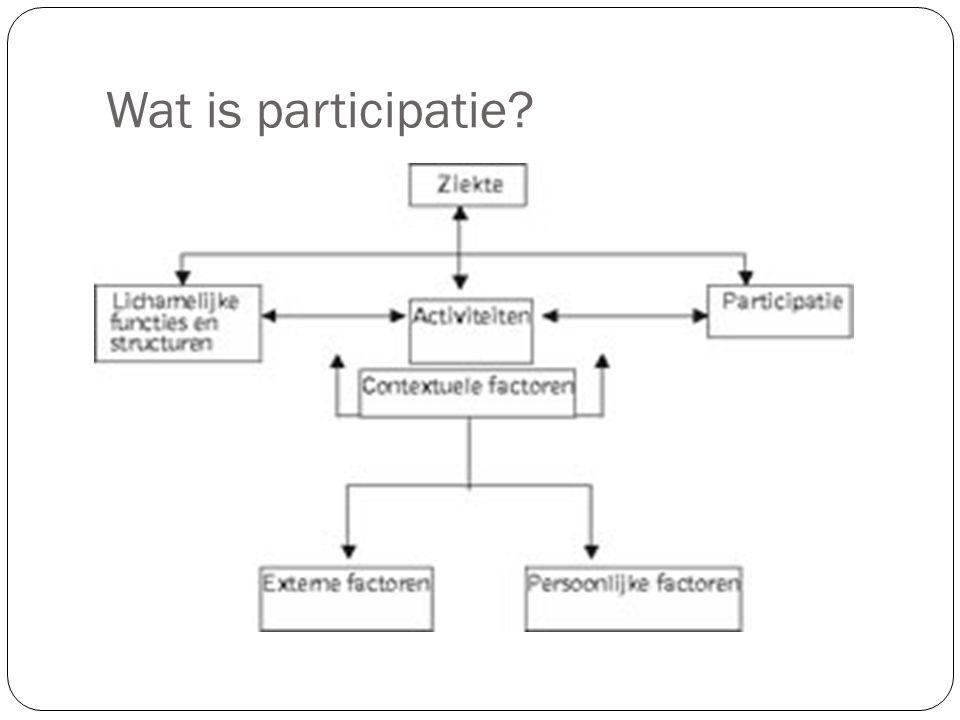 Wat is participatie?
