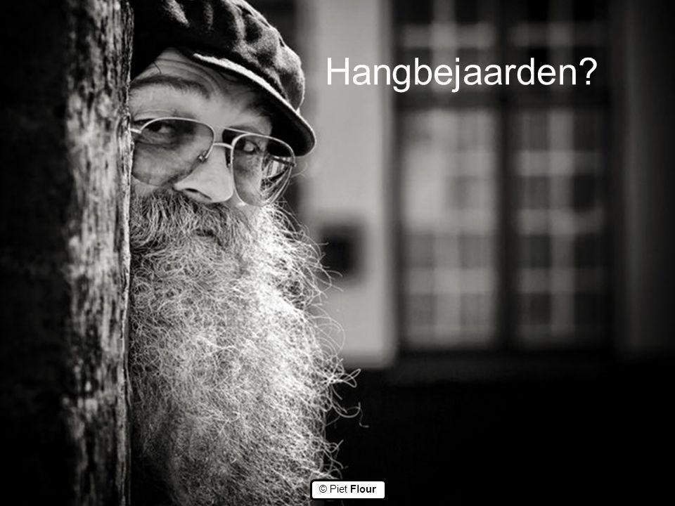 ©© © Piet Flour Hangbejaarden?