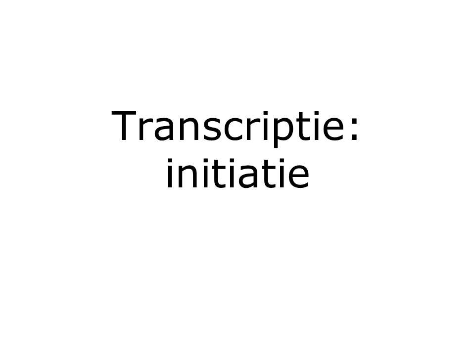 Transcriptie: initiatie