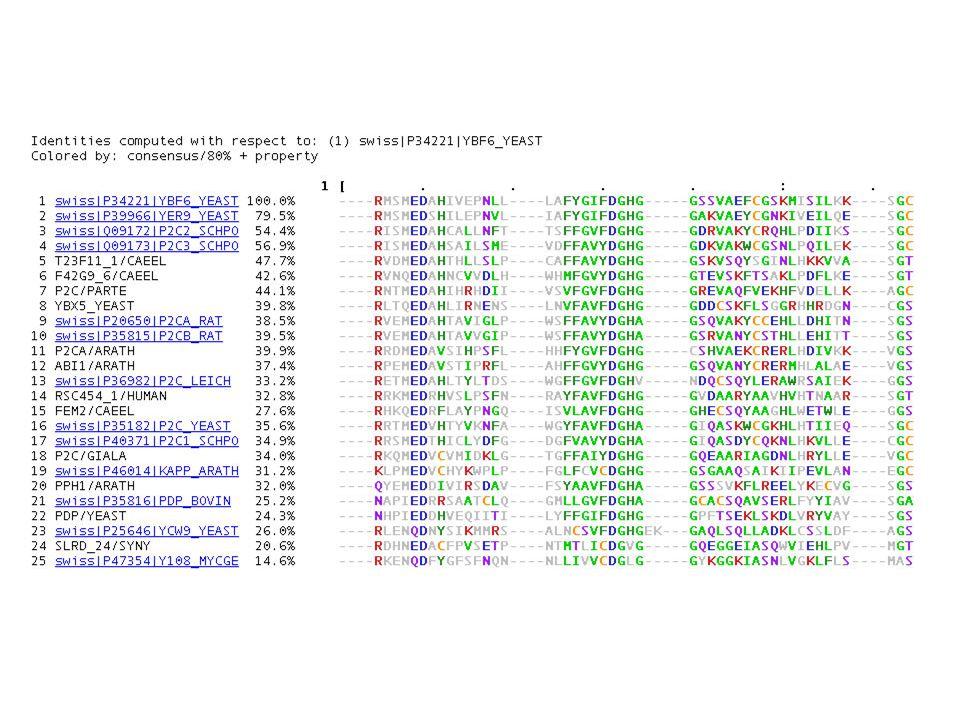 structurele eiwitten (collagen) Enzymen (hexokinase) Transmembraanproteinen (Na/K-pomp) … Alfa-helices, beta-sheets, loops CGGSLLNAN--TVLTAAHC CGGSLIDNK-GWILTAAHC CGGSLIRQG--WVMTAAHC CGGSLIREDSSFVLTAAHC CGSLIREDWVLTAAHC