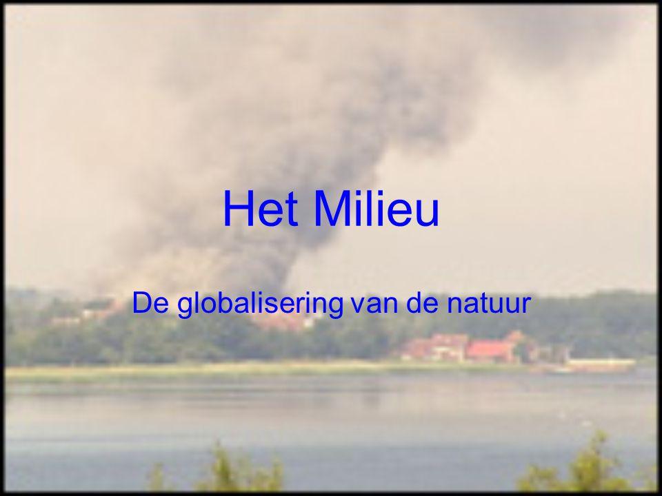 Het Milieu De globalisering van de natuur