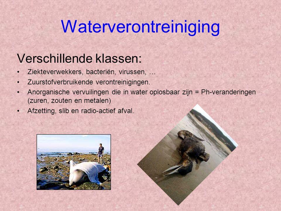 Waterverontreiniging Verschillende klassen: Ziekteverwekkers, bacteriën, virussen, … Zuurstofverbruikende verontreinigingen. Anorganische vervuilingen