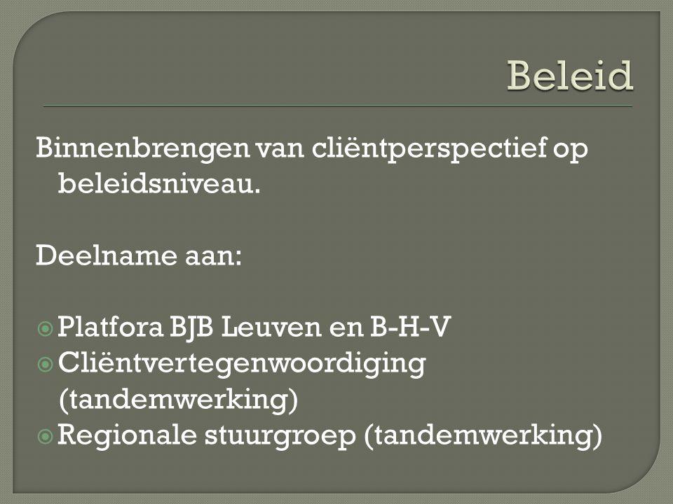 Binnenbrengen van cliëntperspectief op beleidsniveau. Deelname aan:  Platfora BJB Leuven en B-H-V  Cliëntvertegenwoordiging (tandemwerking)  Region