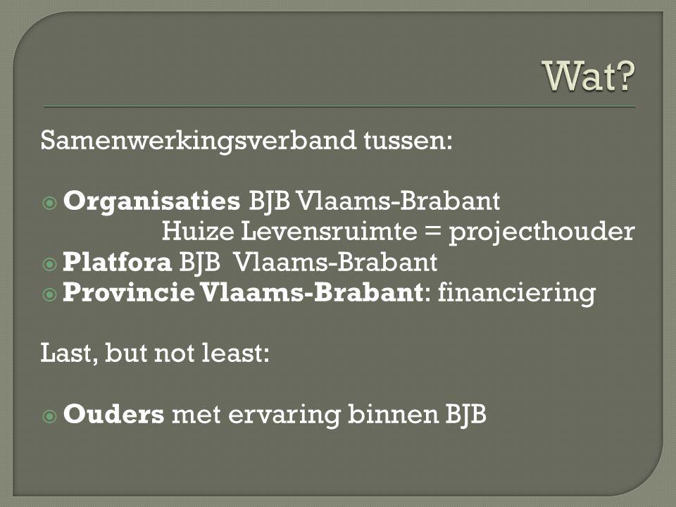 Samenwerkingsverband tussen:  Organisaties BJB Vlaams-Brabant Huize Levensruimte = projecthouder  Platfora BJB Vlaams-Brabant  Provincie Vlaams-Bra